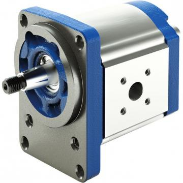PGF2-2X/006RS20VU2 Original Rexroth PGF series Gear Pump