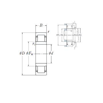 NU1013 NSK Cylindrical Roller Bearings