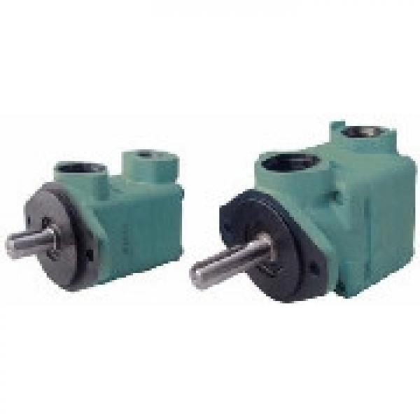 SUMITOMO QT6252-125-63F-S1302-A QT6252 Series Double Gear Pump #1 image