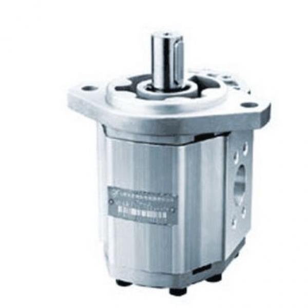 CBW-F310-CFP Gear Pump #1 image