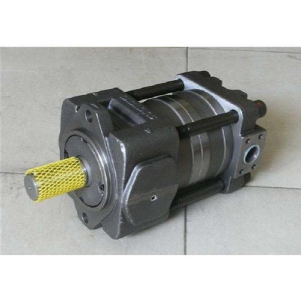 SUMITOMO QT5133 Series Double Gear Pump QT5133-125-12.5F QT5133-80-10F #1 image