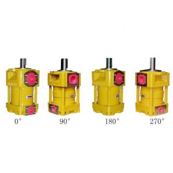SUMITOMO QT4233 Series Double Gear Pump QT4233-31.5-12.5F #1 image