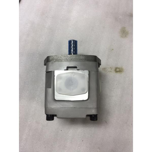 IPH-4B-32-20 NACHI Gear pump #1 image