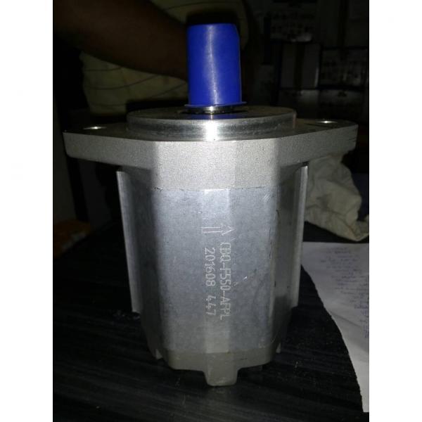 CBW-F310-CFP Gear Pump #2 image