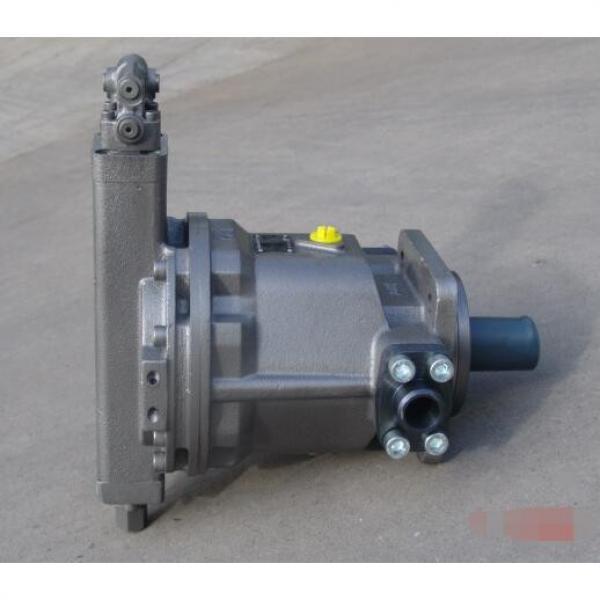 HY80Y-RP piston Pump #2 image
