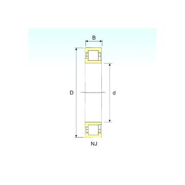 NJ 311 ISB Cylindrical Roller Bearings