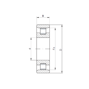 N264 E CX Cylindrical Roller Bearings