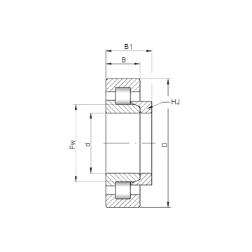 NH304 ISO Cylindrical Roller Bearings