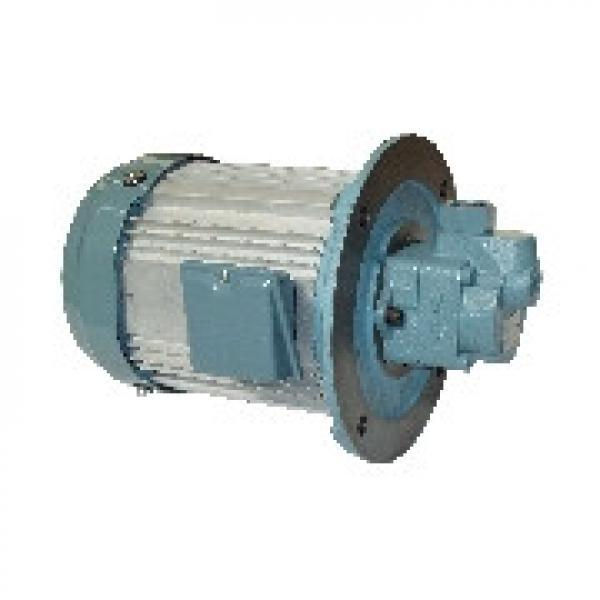 Taiwan HGP-33A-L2323R Hydromax HGP Gear Pump #1 image