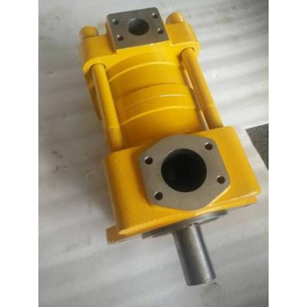 SUMITOMO QT6252-100-63F-HT QT6252 Series Double Gear Pump #1 image