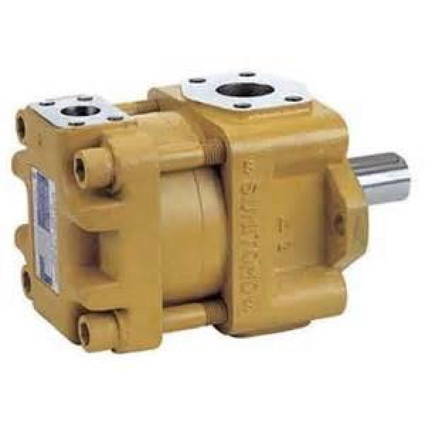 SUMITOMO QT6252-100-63F-HT QT6252 Series Double Gear Pump #1 image