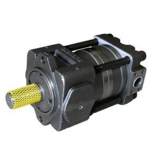 SUMITOMO QT5133 Series Double Gear Pump QT5133-125-10F QT5133-100-12.5F #1 image