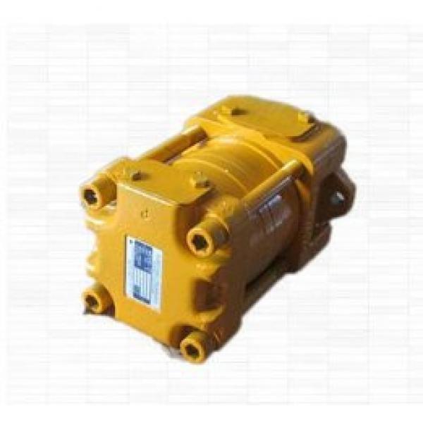 SUMITOMO QT5133 Series Double Gear Pump QT5133-125-10F QT5133-80-12.5F #1 image