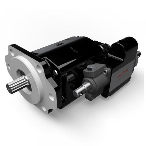 T7DCL B38 014 5R00 A100 Original T7 series Dension Vane pump #1 image